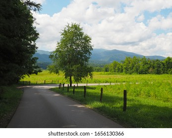 Bending Country Road in Mountains