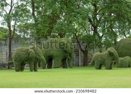 Bending Elephant Trees Garden Stock Photo (Edit Now) 210698482 ...