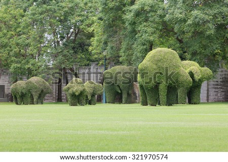 Bending Elephant Trees Garden Green Grass Stock Photo (Edit Now ...