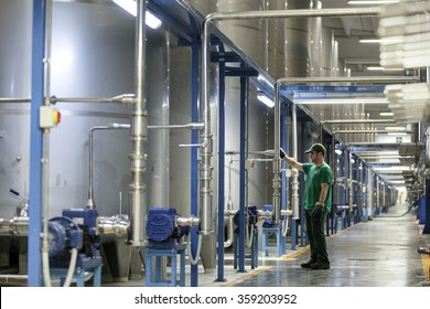 BENEVENTO, ITALY - 12 NOVEMBER 2012: An employee checking an olive oil silo inside a factory for the production of edible oils.