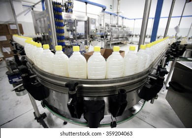 BENEVENTO, ITALY - 12 NOVEMBER 2012: Bottles of sunflower oil travelling along the production line inside a factory for the production of edible oils.