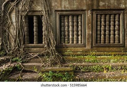 Beng Mealea temple jungle in Cambodia