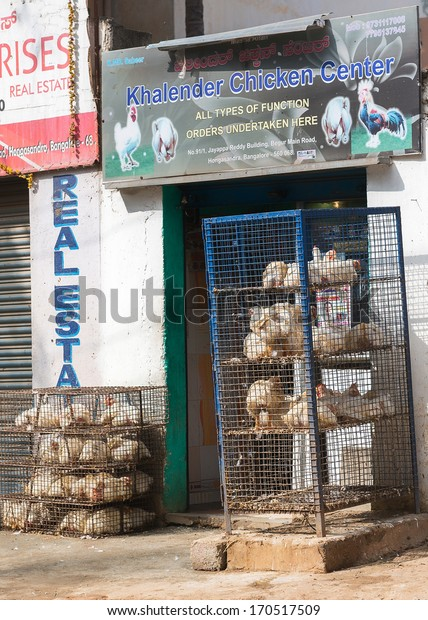BENGALURU, INDIA - CIRCA NOVEMBER 2013: Butcher shop with racks of cages holding living chickens.