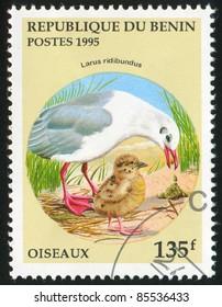 BENIN - CIRCA 1995: stamp printed by Benin, shows bird, circa 1995.