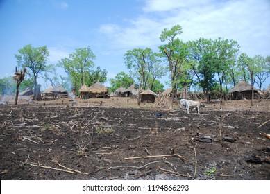 Benishangul Gumuz, detail of rural village in a remote area of Western Ethiopia, close to the Sudanese border