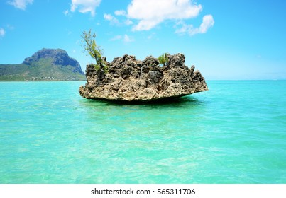 Benitiers Island Mauritius, chrystal rock