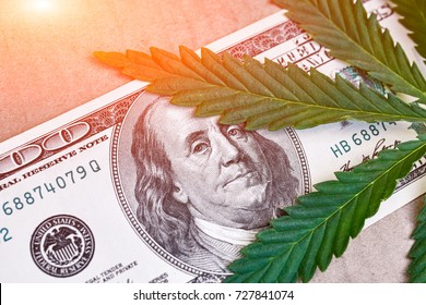 Benjamin Franklin portrait, shown in the US with Sheet of Cannabis, Marijuana. Conceptual photo. Background in the form of banknotes with weed