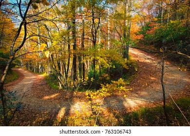 Bent Creek NC