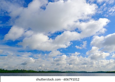 Bentota Madu Ganga river, Sri Lanka. Summer landscape with white stormy clouds. Mangrove trees in the water. Big river in Asia. Beautiful sky in the wild nature.