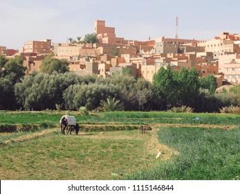 Berber city in Morocco