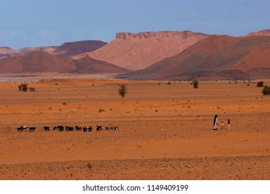 Berber people in Ouzina desert, in Morocco.
