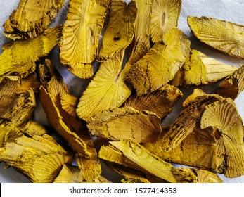 Berberine, Coscinium fenestratum (Goetgh.) Colebr or Fibraurca recisa Pierre is an herbal plant.