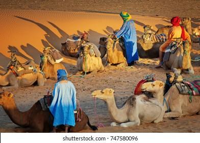 Berbers with Dromadaires in Sahara Desert Morocco - Sahara trekking tours