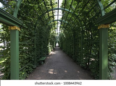 Berceau at Summer garden in Saint Petersburg. Russia