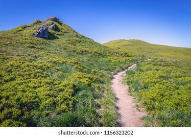 Berdo mountain near Ukraine border in Bieszczady National Park in Subcarpathian Voivodeship of Poland