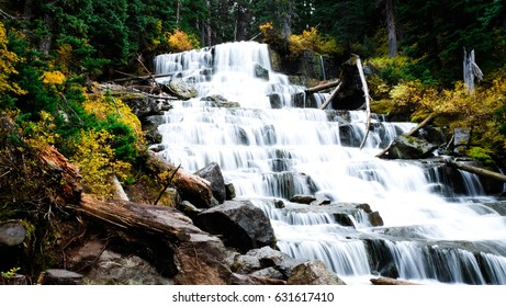 Berg Lake Trail, Mt. Robson