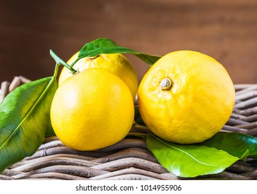 Bergamot citrus fruit from south Italy, Reggio Calabria.Fresh bergamot citrus fruits on wooden rustic background.