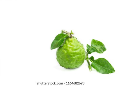 Bergamot and green leaf on white background, the fruit for cooking. Bergamot is a mixture of shampoo for hair prevent gray hair.