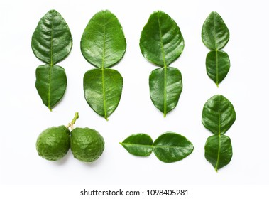 Bergamot kaffir lime with leaves herb fresh ingredient isolated on white background.