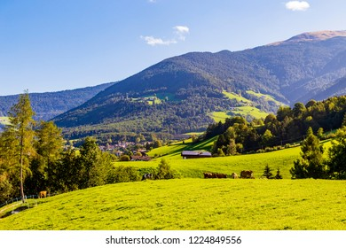 Berge mit Wiese in den Alpen, Südtirol, Italien, mountain with meadow in the Alps, South Tyrol, Italy