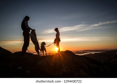 Bergen, Norway - August 8th 2017: A couple and their dogs
