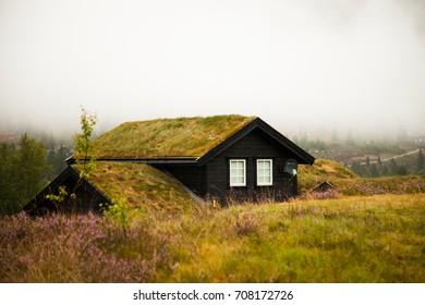BERGEVIK, NORWAY - AUGUST 15, 2017: Traditional norwegian wooden house. Typical Norwegian house. Beautiful colored village house. Summer landscape in Norway. Norwegian Village