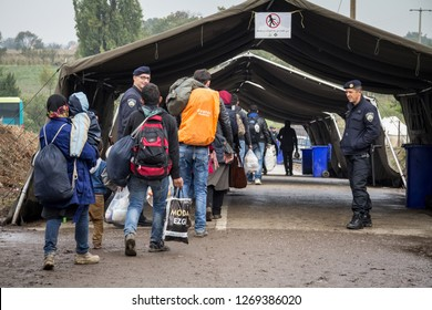 BERKASOVO, SERBIA - OCTOBER 17, 2015: Refugees walking towards the Croatian border crossing  on the Croatia Serbia border, between the cities of Bapska and Berkasovo on the Balkans Route, during the R
