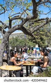 BERKELEY, CA- Apr 16, 2016: University of California students drinking coffee and talking  at outdoor tables of a popular cafe across the street from the campus. A tree gives shade on a sunny day.