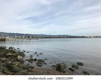 Berkeley California marina