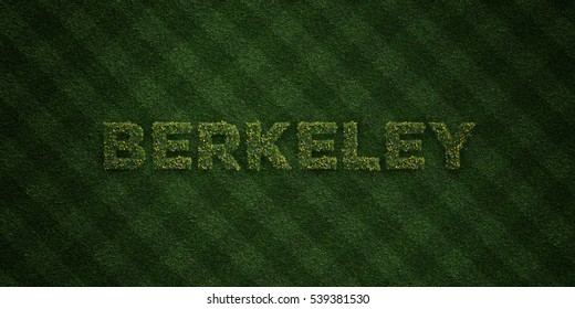 BERKELEY - fresh Grass letters with flowers and dandelions - 3D rendered royalty free stock image. Can be used for online banner ads and direct mailers.