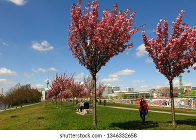 BERLIN, GERMANY—APRIL 22, 2016: People stroll around the Berlin Wall East Side Gallery in Berlin, Germany beneath flowering trees. Hope for a brighter future springs eternal.