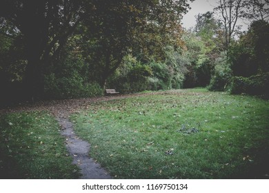 Berlin City Park, Wooden Park Bench in Fall, moody landscape darkness