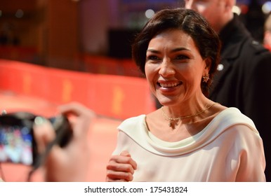 """BERLIN - GERMANY - FEBRUARY 7: Dolores Heredia at the 64th Annual Berlinale International Film Festival """"Two Men in Town"""" premiere at Berlinale Palast on February 7, 2014 in Berlin, Germany."""
