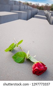 Berlin, Germany - November 12, 2018: Red rose on the Memorial to the Murdered Jews of Europe.