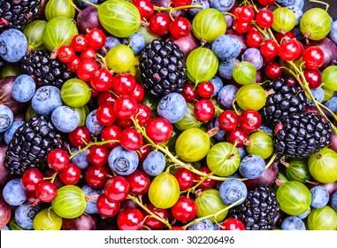 Berries background.Antioxidants, detox diet.