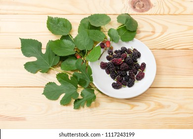 Berries of the black mulberry on the white saucer and branches of mulberry tree on a light colored wooden surface
