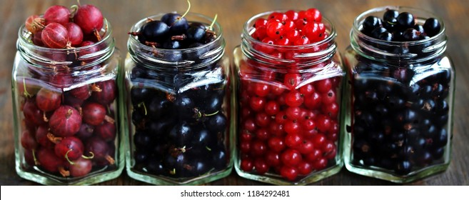 Berries in cans for canning- currant black and red and gooseberry red and black (yoshta). Harvesting berries for the winter. Canning of berries. Garden berry bushes. Copy Space