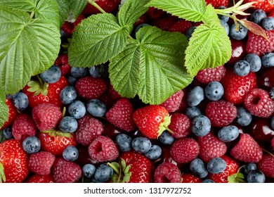 Berries closeup colorful assorted mix of strawberry, blueberry, raspberry and sweet cherry .