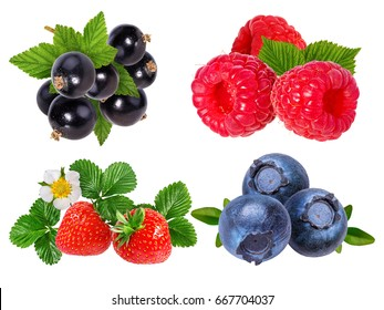 Berries collection. Raspberry, blueberry, currant, strawberry  isolated on white.