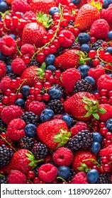 Berries fresh colorful overhead assortment on bright light strawberries, blackberries, red currant and raspberries shiny arrangement in studio
