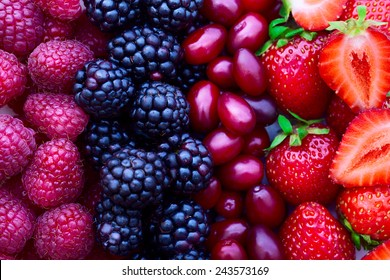 Berries, fruits, summer