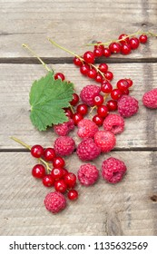 Berries of raspberries and red currants. Summer background. Background in country style.