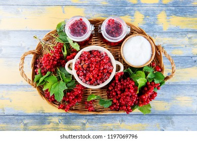 berries of ripe red viburnum and jam