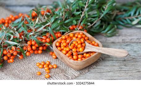 berries of sea-buckthorn on a wooden table, sea buckthorn oil