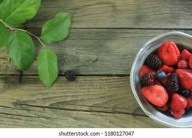 berry on table