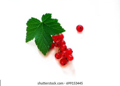 Berry red currant, green leaf on a light background