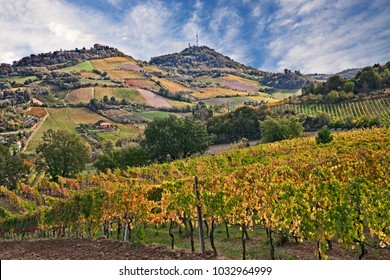 Bertinoro, Forli-Cesena, Emilia Romagna, Italy: autumn landscape of the hilly countryside with vineyards for wine production