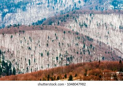 Beskid wyspowy mountains winter scenery