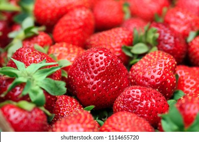 Best background with freshly harvested strawberries in big frame picture. Fresh organic and ripe red strawberry in macro picture. Conceptual image for banners, covers and other design projects.