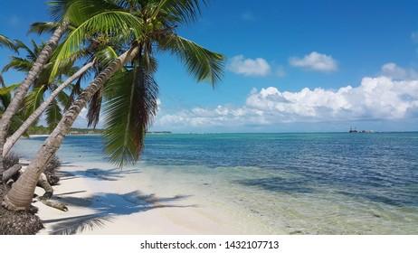 Imágenes, fotos de stock y vectores sobre Caribbean Best